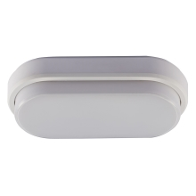 Udendørs LED loftslampe LED/12W/230V IP54
