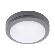 Udendørs LED loftslampe LED/13W/230V IP54