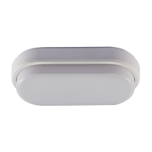 Udendørs LED loftslampe LED/8W/230V IP54